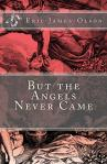 But_the_Angels_Never_Cover_for_Kindle